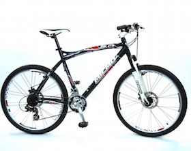 Mens mountain bike rental.