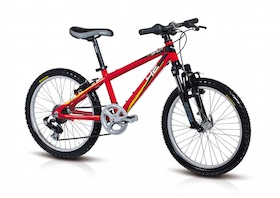 Childrens mountain bike rental.