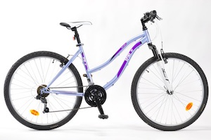Womans mountain bike rental.